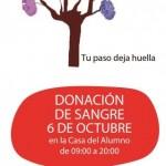 Día Donante Sangre UPV 2013