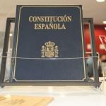 Dia_Constitución_2014-01