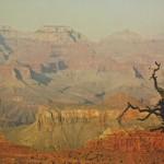 "Victor Lujan Cuenca por ""Els Colors de la Terra: El Grand Canyon"""