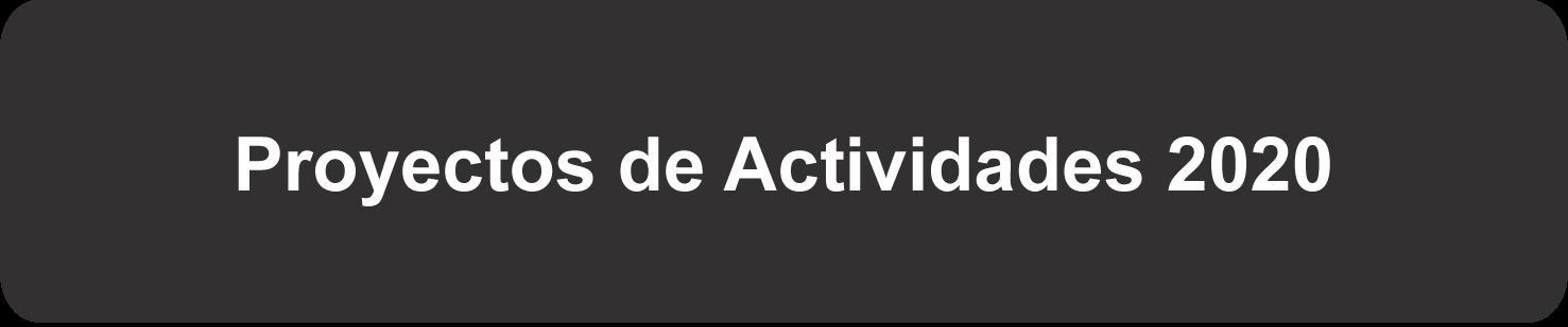 Proyectos de Actividades 2020