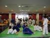 judo_2011