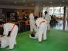 judo_2011_13