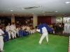 judo_2011_36